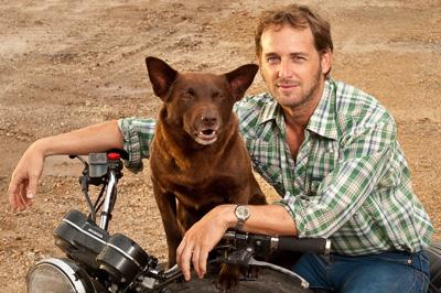 Sweet Home Alabama Movie Dog